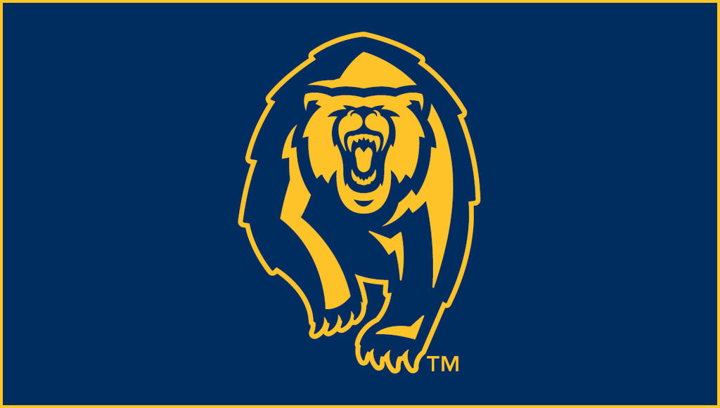 Image result for cal golden bears